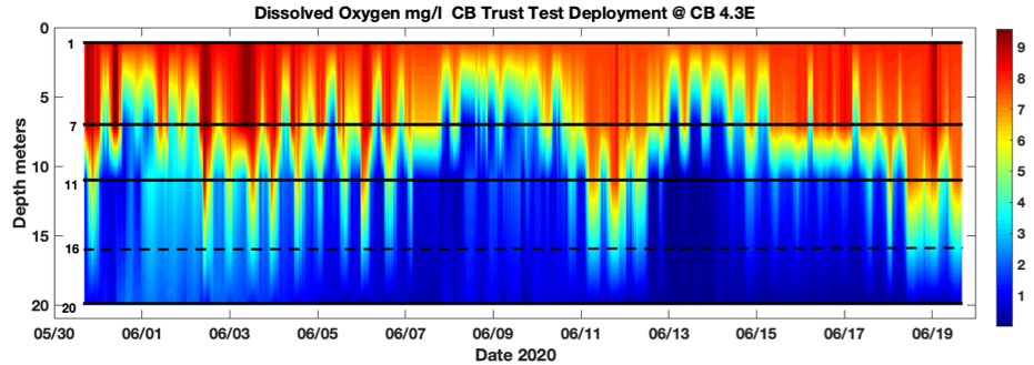 A chart from the Chesapeake Bay Trust shows dissolved oxygen levels at different water depths.