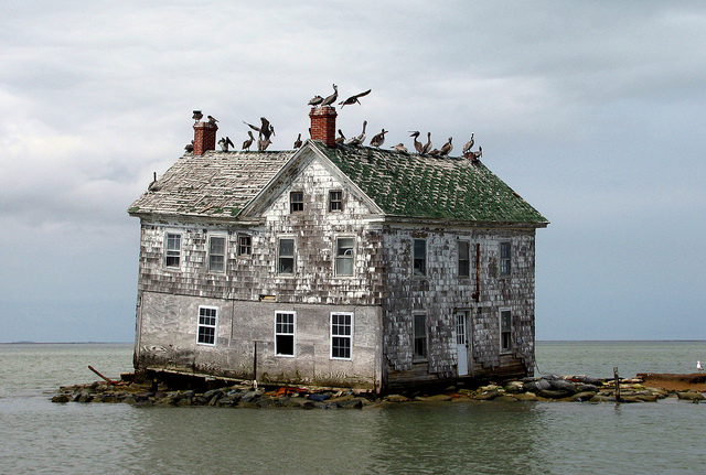 Last house on Holland Island (image courtesy baldeaglebluff/Flickr)