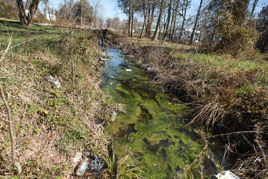 photo essay small town cleanup makes big impact on waterway   gathered near the small town of marydel on maryland s eastern shore where resident carol sparks not pictured had reported an illegal dump site along