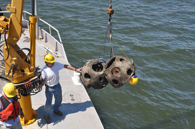reef balls being lowered into the water