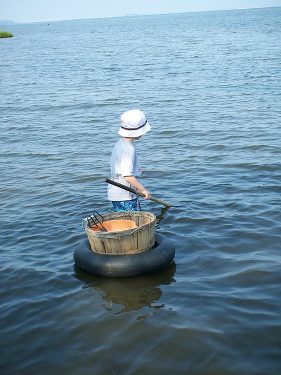A little boy brings a net out into the Chesapeake Bay.