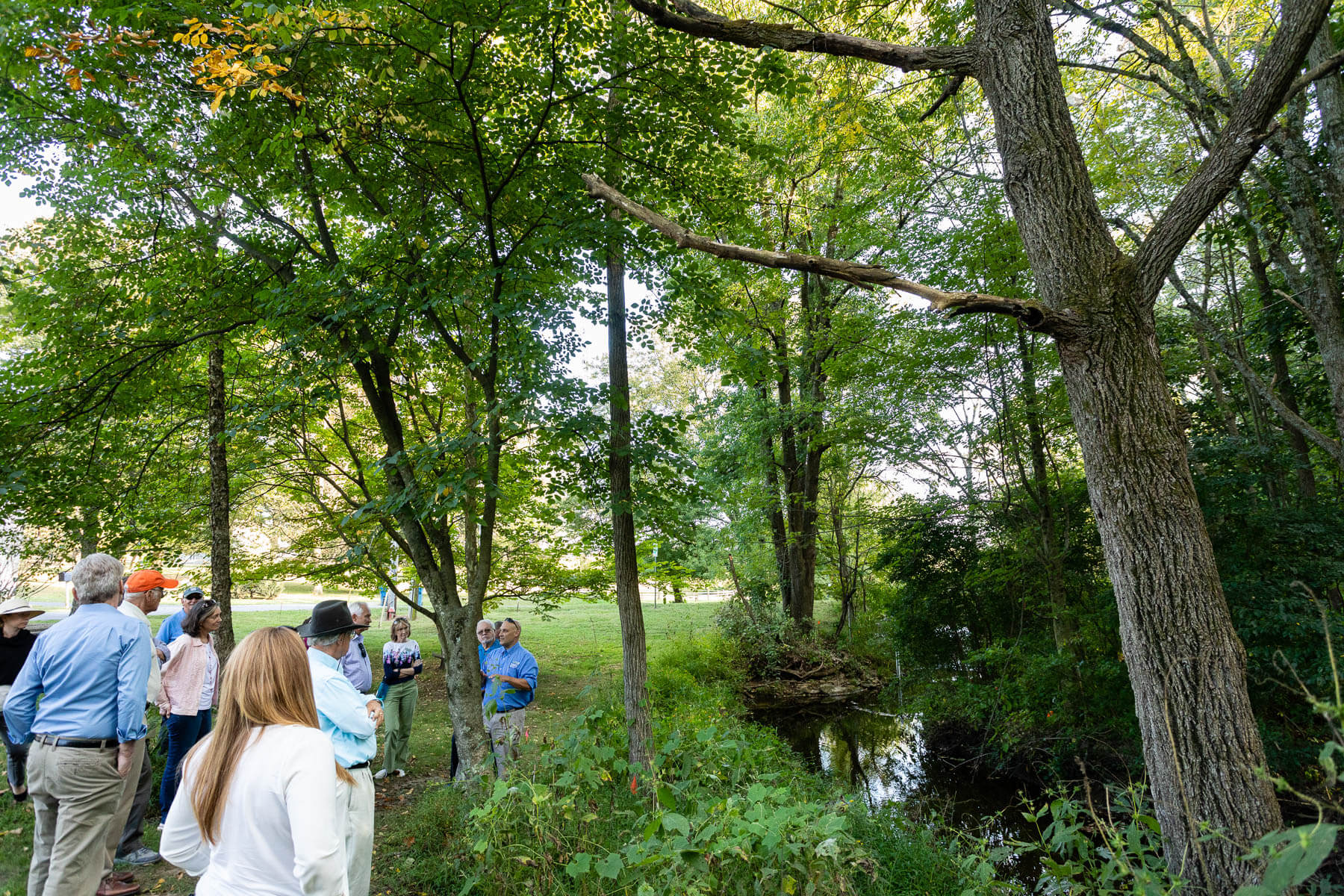 A large group tours a forest buffer at Stroud Water Research Center.