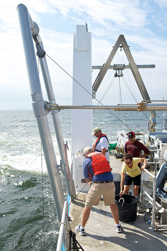 chesapeake bay essay This project received funding from the national fish and wildlife foundation -  chesapeake bay innovative nutrient and sediment reduction grant, city of.
