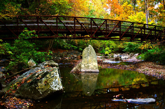 Sligo Creek in fall