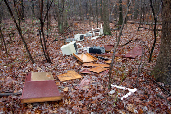 trash in woods near Accotink Creek