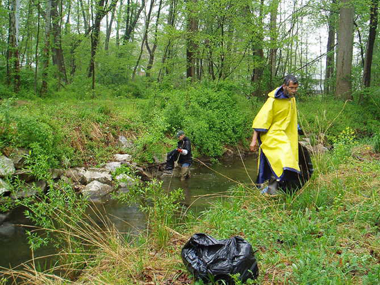 volunteers cleaning up Accotink Creek