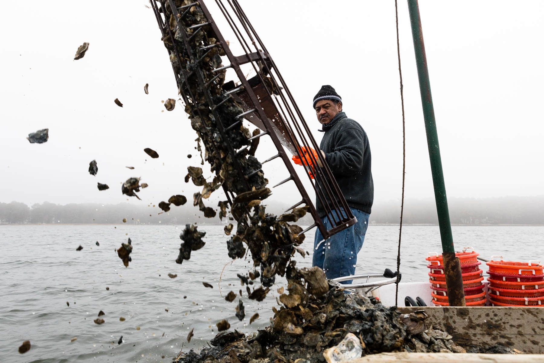 ac1975ba2e474 Captain Tyrone Meredith harvests oysters with 18-foot hand tongs. His father