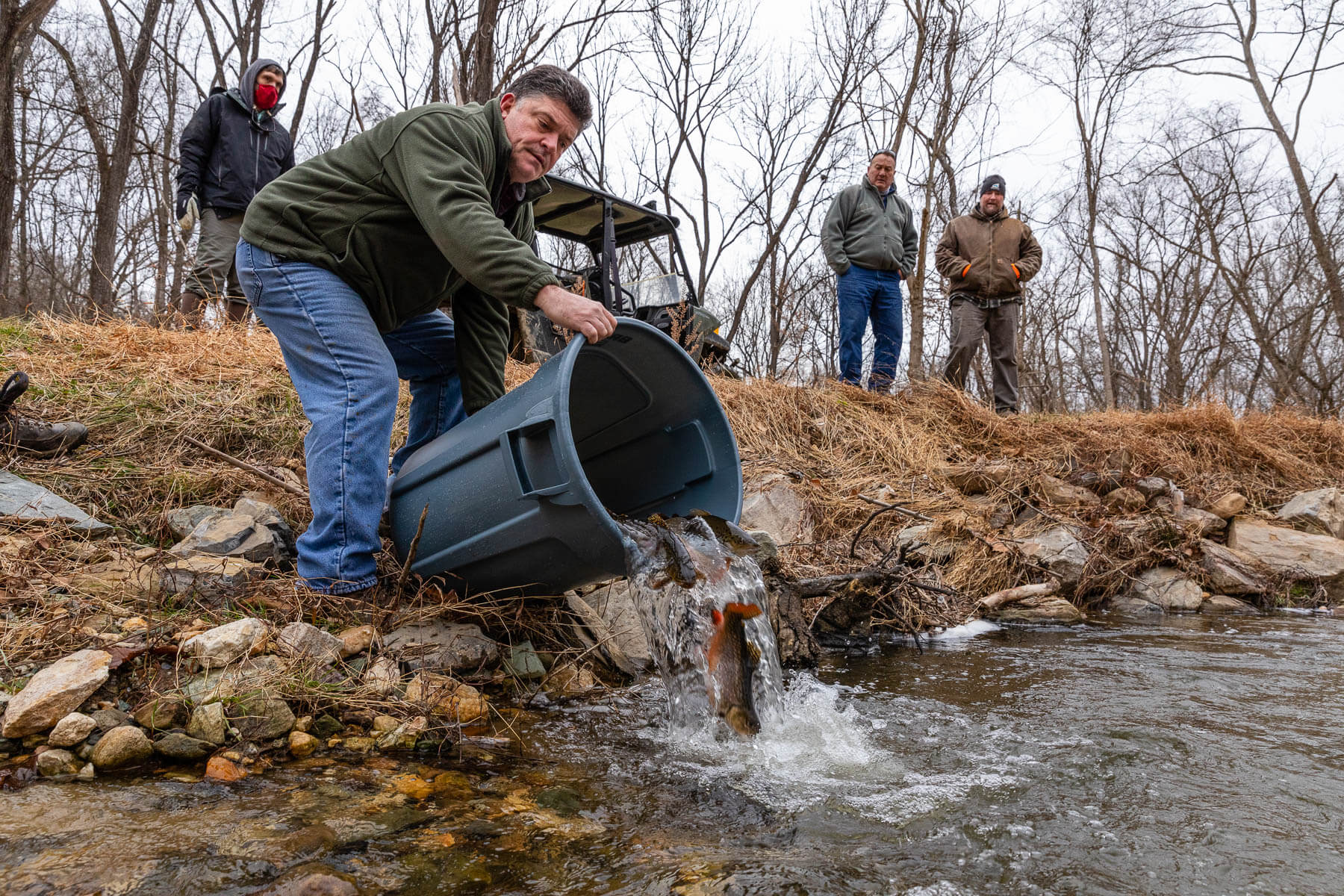 Trout released in restored Piney Run