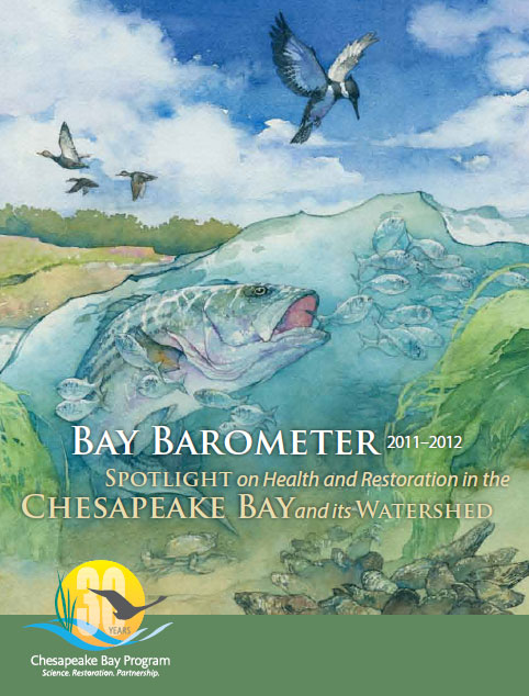 Bay Barometer Cover Image