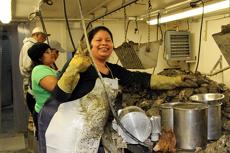 A woman with gloves and apron govered in soot smiles while holding up two fingers next to a mountain of oyster shells