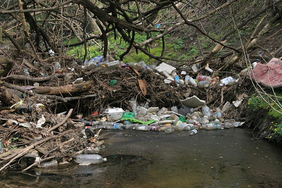trash in Bread and Cheese Creek