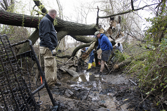 volunteers cleaning up Bread and Cheese Creek