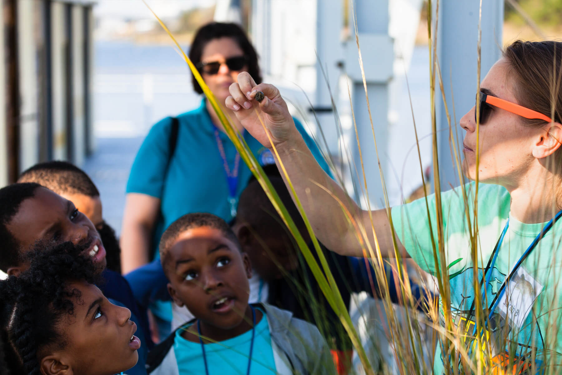 Fourth-grade students examine a marsh periwinkle on the Elizabeth River Project's Learning Barge in Norfolk, Virginia.