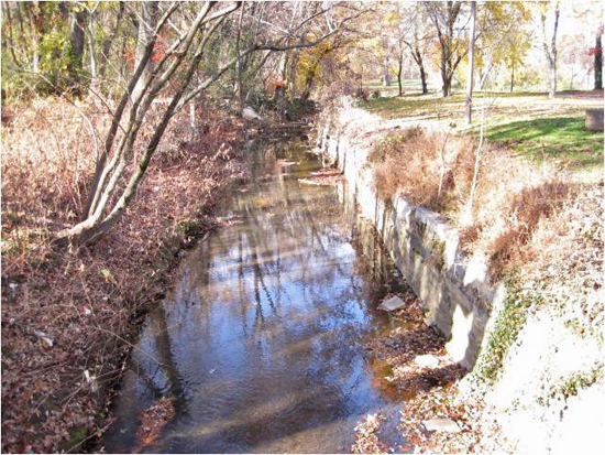 Watts Branch before
