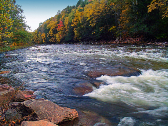 Loyalsock Creek (image courtesy Nicholas_T/Flickr)