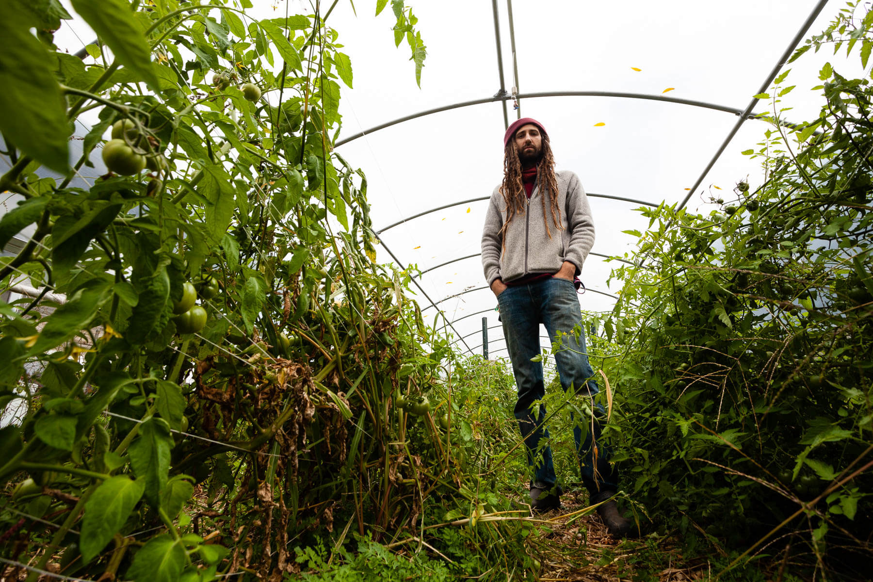 Farm manager in hoop house