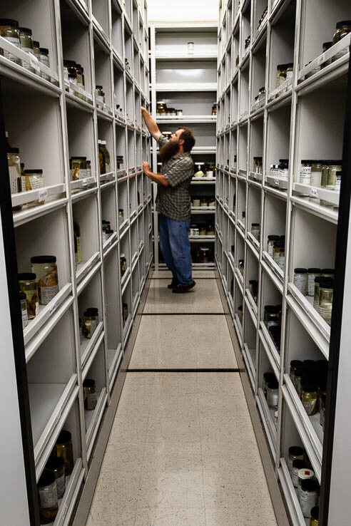 Man stands between rows of jars on shelves