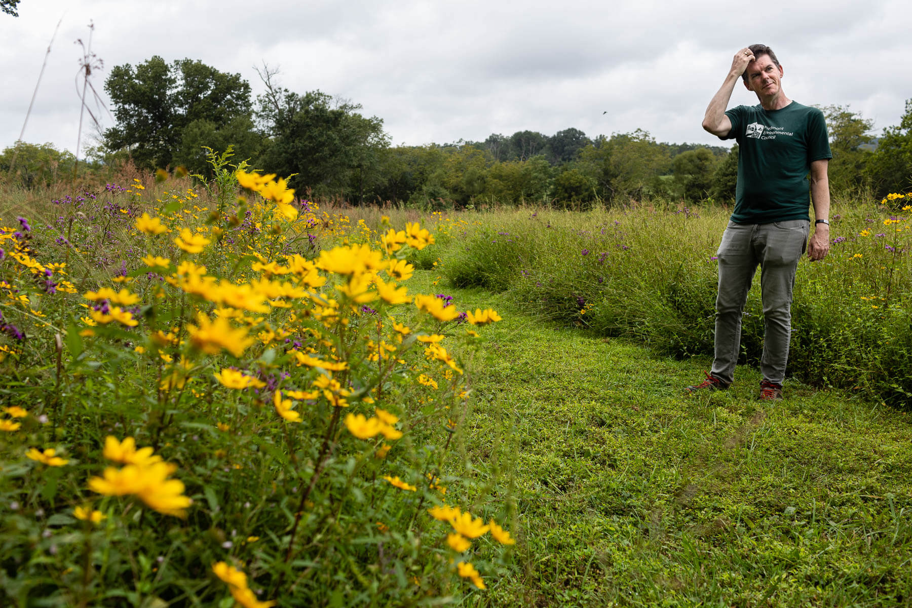 Mike Kane pauses while touring a seven-acre native grassland area.