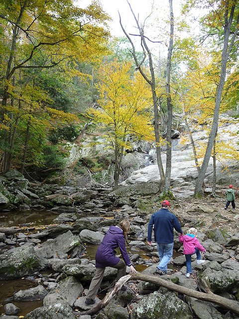 A family crosses a shallow creek in Catoctin Mountain National Park.