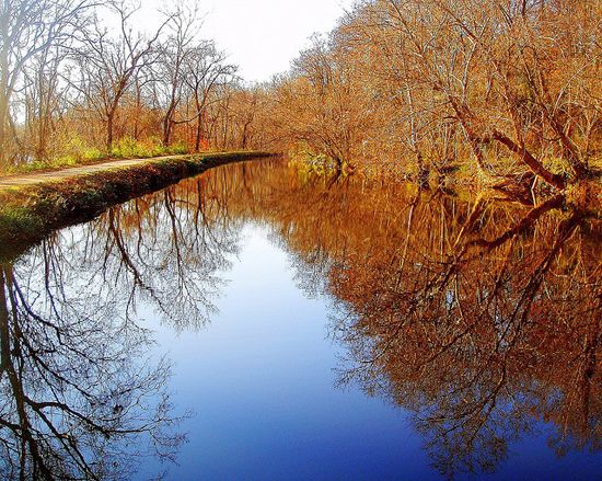 A view of the Chesapeake and Ohio Canal from the trail.
