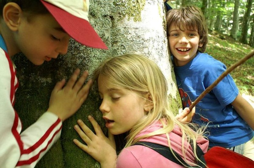 Children hug a tree.