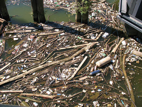 Anacostia River Trash