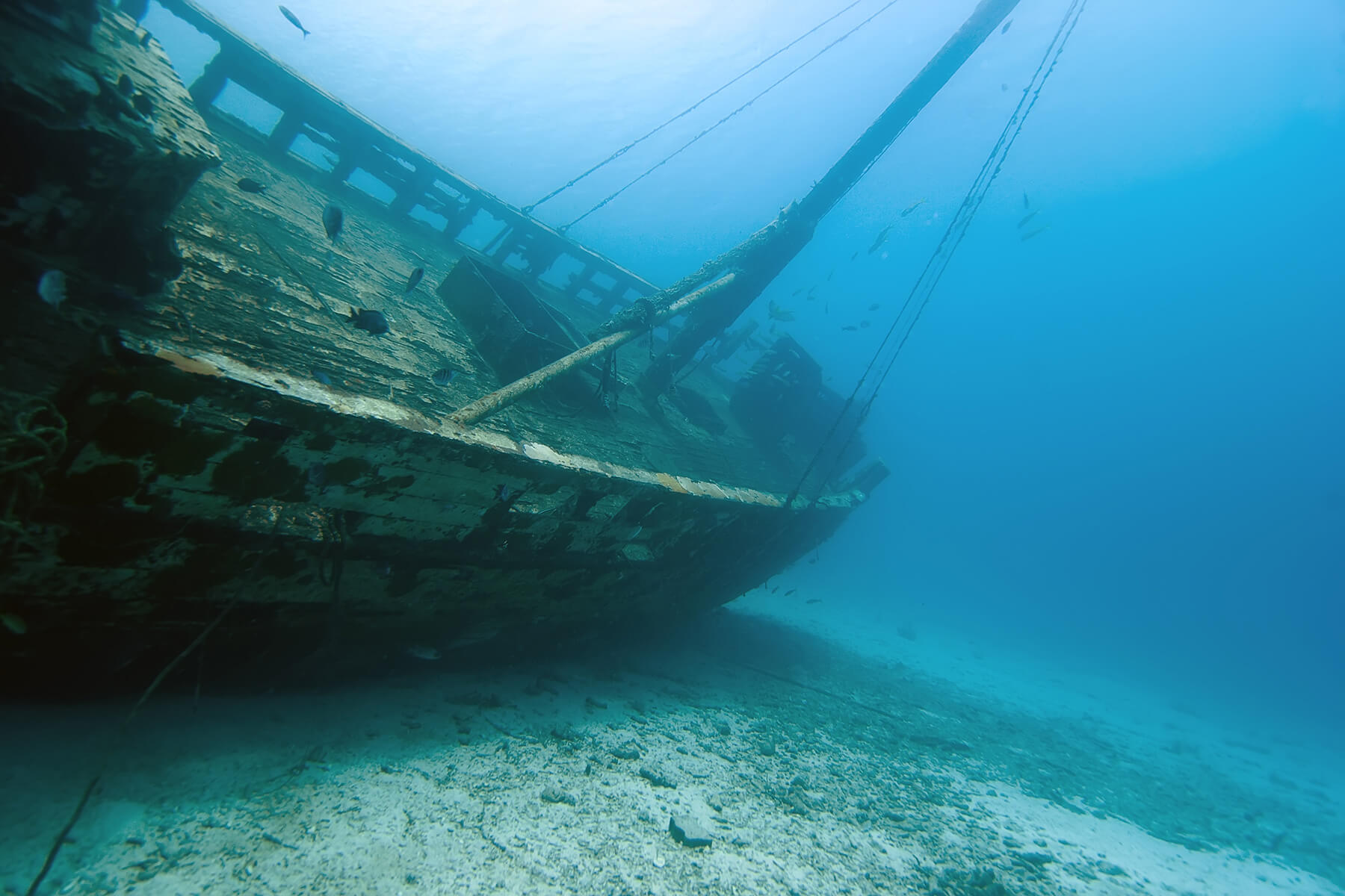 real pirate ship found