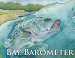 Bay Barometer: Spotlight on Health and Restoration in the Chesapeake Bay and its Watershed 2011-2012