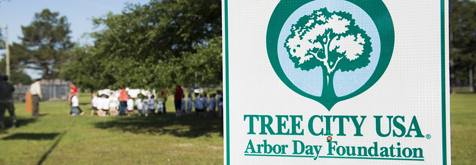 Celebrating 'Tree City' communities