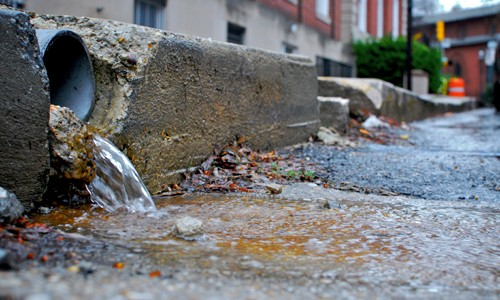 As stormwater flows across streets, sidewalks, lawns and golf courses, it can pick up harmful pollutants and push them into storm drains, rivers and streams. Increased development across the watershed has made stormwater runoff the fastest growing source of pollution to the Chesapeake Bay.