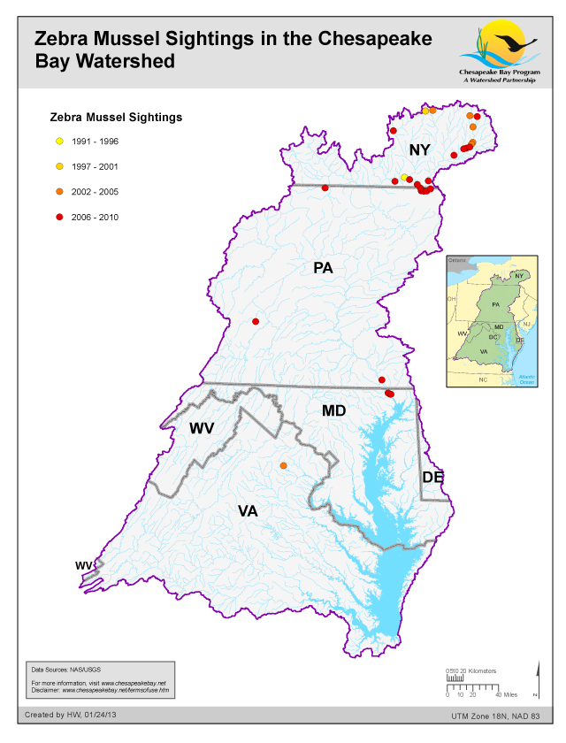 Zebra Mussel Sightings in the Chesapeake Bay Watershed