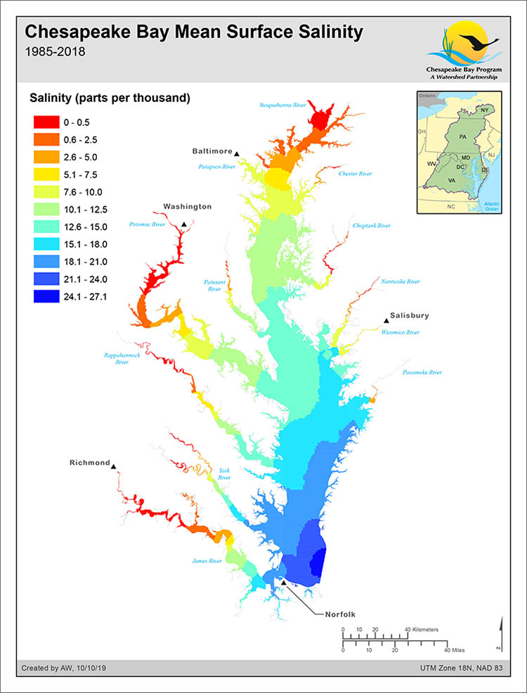 Chesapeake Bay Mean Surface Salinity (1985-2018)