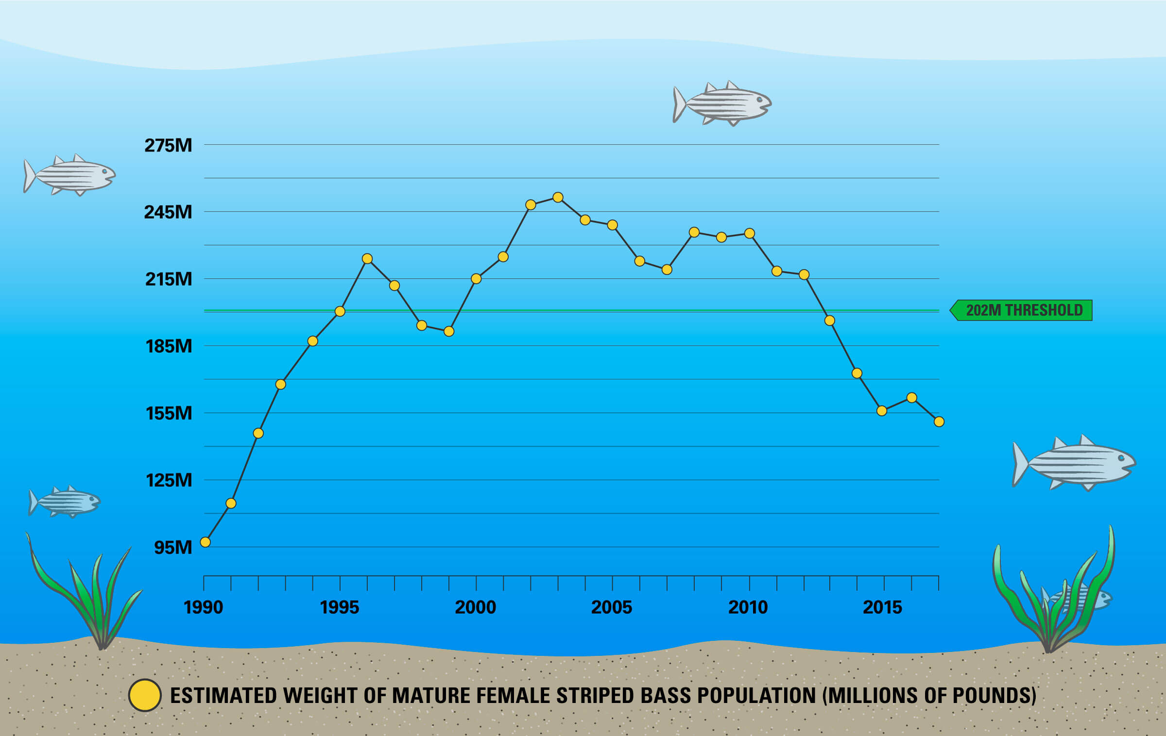Line graph illustrating the estimated weight of the mature female striped bass population from 1990 to 2018.