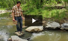 From the Field: Restoring Washington, D.C.'s urban streams
