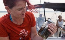 From the Field: Trash Trawl hauls microplastics from Bay waters
