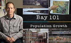 Bay 101: Population Growth