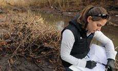 From the Field: Tracking the health of Baltimore's hidden streams