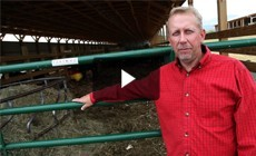 Restoration Spotlight: Farm's conservation practices cut pollution at its source