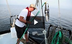 From the Field: Monitoring water quality in the Chesapeake Bay