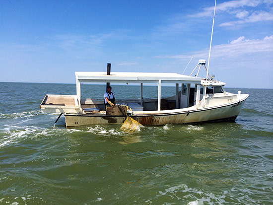 Chesapeake bay program for Used fishing boats for sale in md