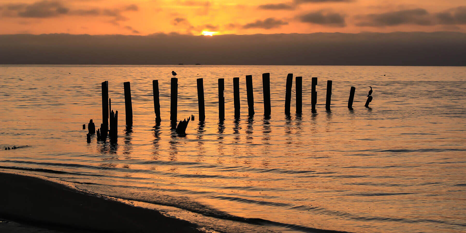 Picture of pilings in the water at sunset
